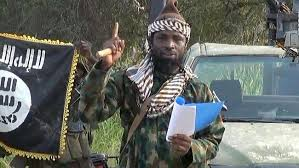 Army recover Shekau's Qur'an, flag in Sambisa – Official