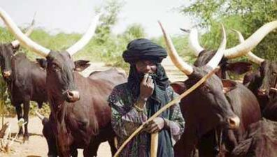 Southern Kaduna crisis not religious — Cattle Breeders group says