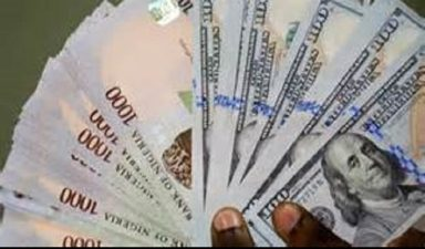 Naira bounces back after one-week depreciation