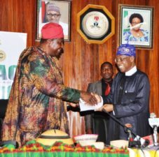 FG hints N300m BoI's credit will create 200,000 jobs for artists