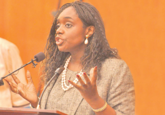 REO Launch: Adeosun calls on African leaders to summon political will in tackling challenges