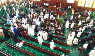 PDP lawmakers condemn presidential system, want Nigeria to adopt parliamentary method