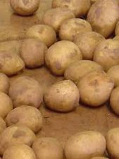 FG Injects N3.38bn into Irish potatoes production in Plateau