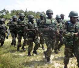 Army kills 10 insurgents, recovers 52 cows in Borno