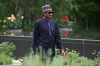 Buhari is APC's only choice in 2019, party chieftain declares