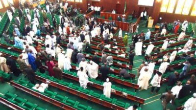 Rowdy session in Green Chamber, as 2 PDP Reps defect to APC