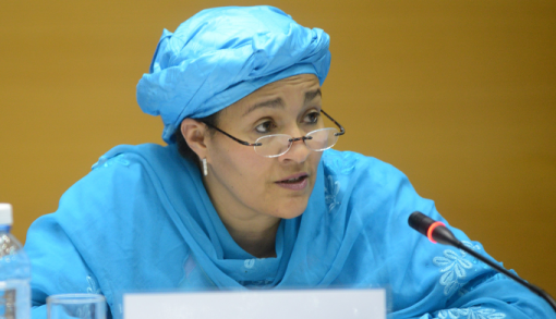 Amina-Mohammed-Minister-of-the-Environment-e1462899421679.png