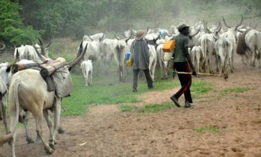 FG's committee on herders/farmers crisis visits Benue