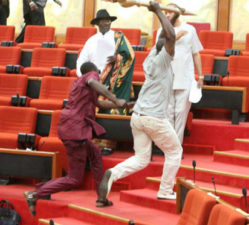 Police says removal of Mace product of NASS security men, lawmakers conspiracy