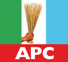 APC claims all NASS seats in Niger