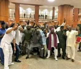 NASS SIEGE: Presidential aide demands apology from PDP/security agents-support media