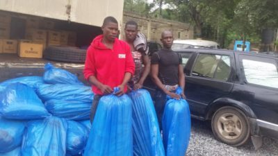 Ogun Police arrest 3 with 40 bags Indian hemp