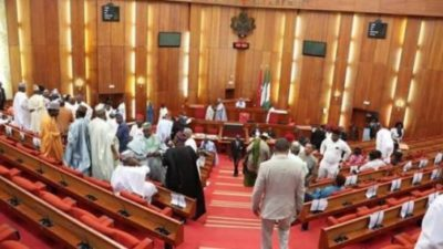 Commotion in Nigerian Senate, as PDP Minority Leader calls for Buhari's Social Interventional Programme probe
