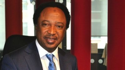 Shehu Sani slams colleagues over rowdy session at 2019 budget presentation