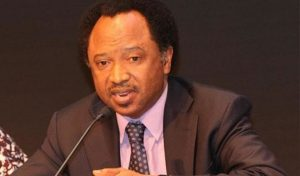 Whether Buhari owns Etisalat, Keystone Bank or not, publish full names of shareholders, Shehu Sani tells companies as Buhari's supporters respond, publish names