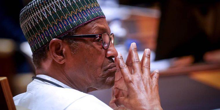 Border Closure:Beware of economic saboteurs, SINET tells Buhari